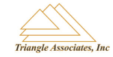 Triangle Associates Inc